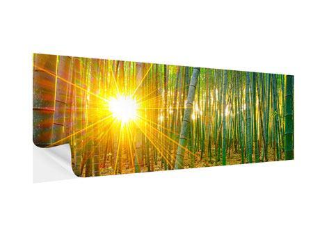 Klebeposter Panorama Bambusse