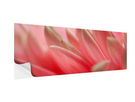 Klebeposter Panorama Close Up einer Blüte