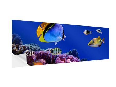 Klebeposter Panorama Welt der Fische