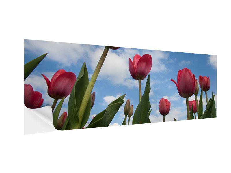 Klebeposter Panorama Tulpen im Himmel