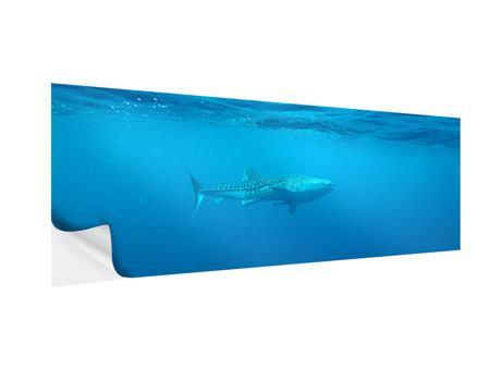Klebeposter Panorama Der Walhai