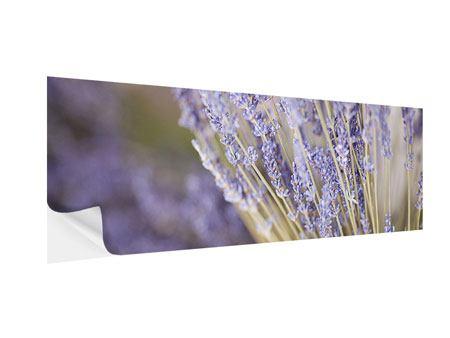Klebeposter Panorama Lavendel XXL