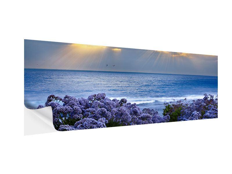 Klebeposter Panorama Der Lavendel und das Meer