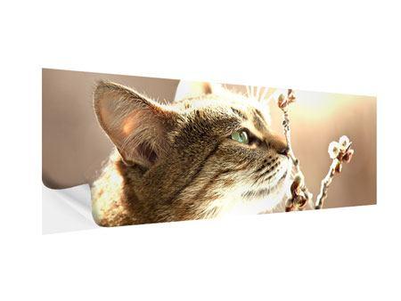 Klebeposter Panorama Die Katze