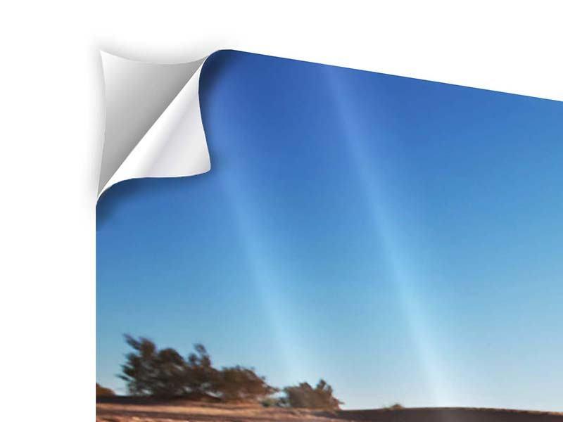 Klebeposter Panorama Dürre