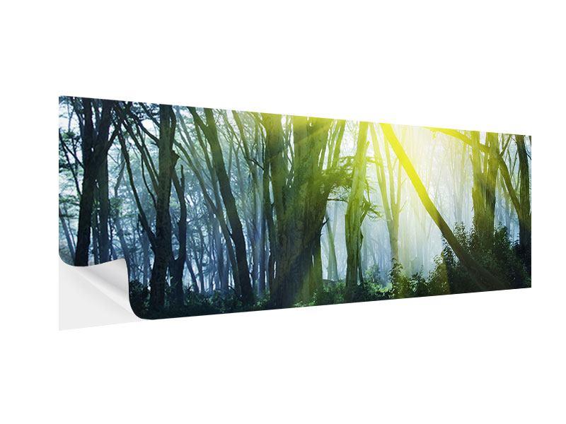 Klebeposter Panorama Sonnenstrahlen im Wald