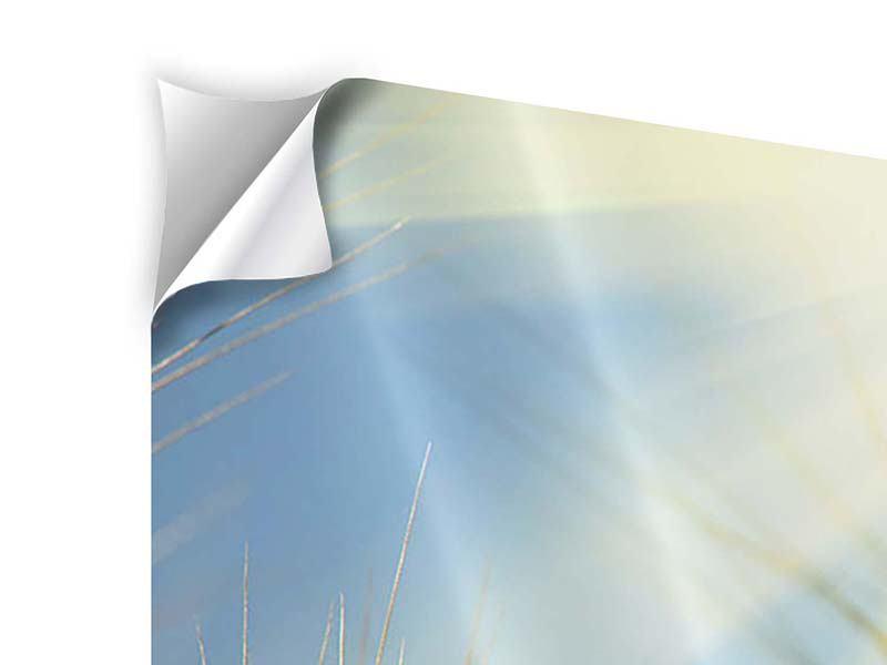Klebeposter Panorama König des Getreides
