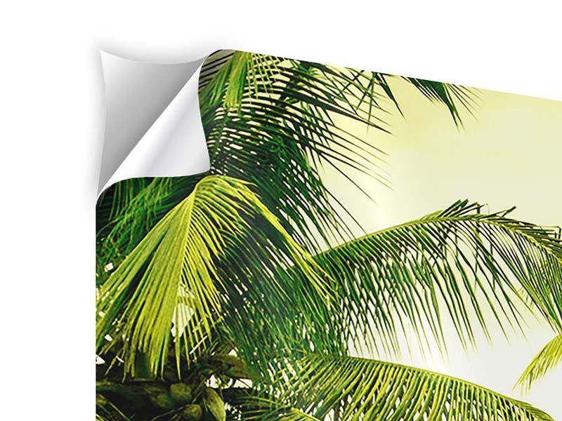 Klebeposter Panorama Reif für die Insel