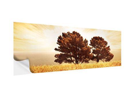 Klebeposter Panorama Bäume im Lichtspektakel