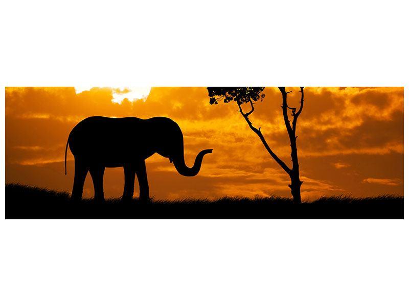 Klebeposter Panorama Verträumtes Afrika