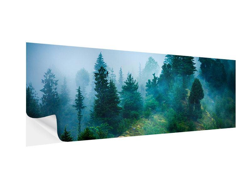Klebeposter Panorama Geheimnisvoller Wald