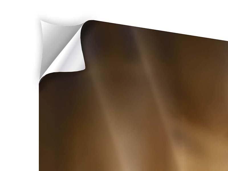Klebeposter Panorama Wellness-Steine