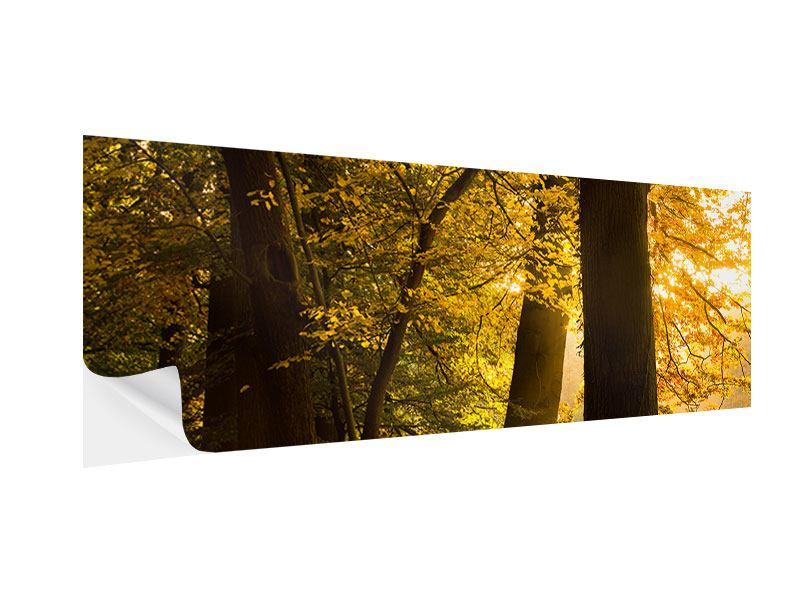 Klebeposter Panorama Herbstlaub