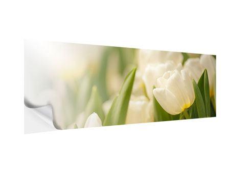Klebeposter Panorama Tulpenperspektive