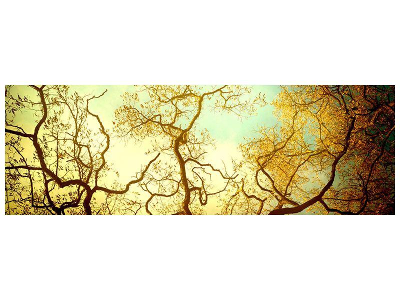 Klebeposter Panorama Bäume im Herbst