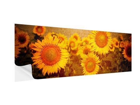 Klebeposter Panorama Retro-Sonnenblumen