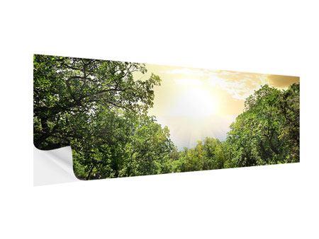 Klebeposter Panorama Am Ende des Waldes