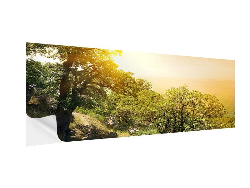 Klebeposter Panorama Sonnenuntergang in der Natur