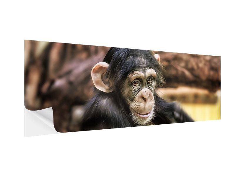 Klebeposter Panorama Der Schimpanse