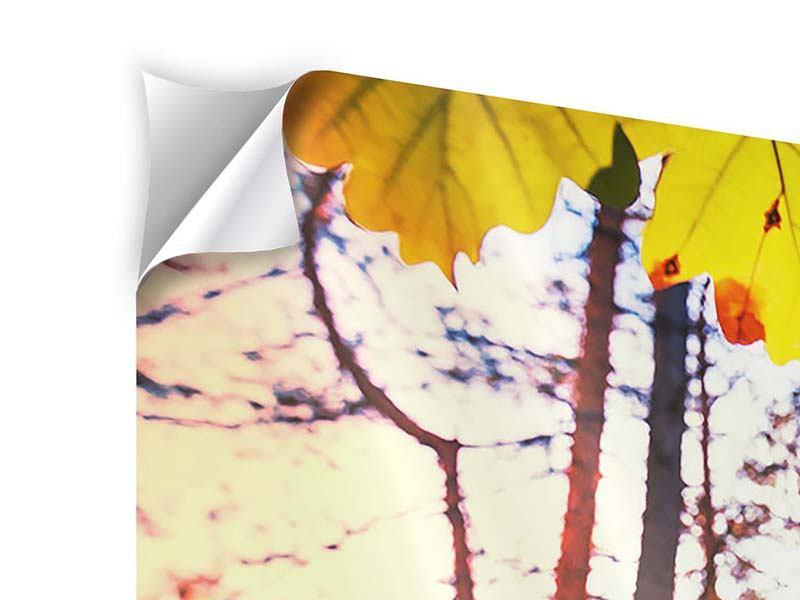 Klebeposter Panorama Herbst