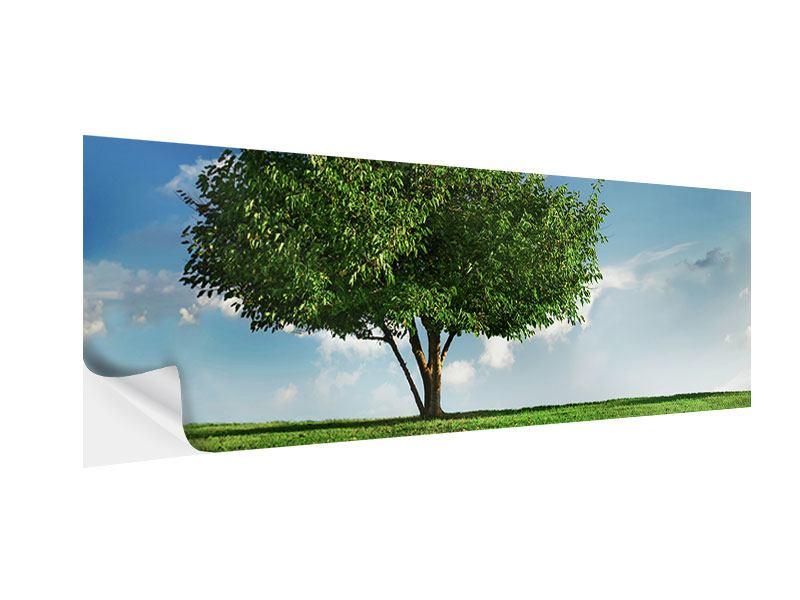 Klebeposter Panorama Baum im Grün
