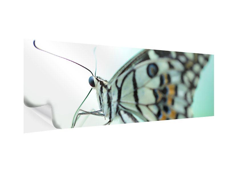 Klebeposter Panorama Schmetterling XXL