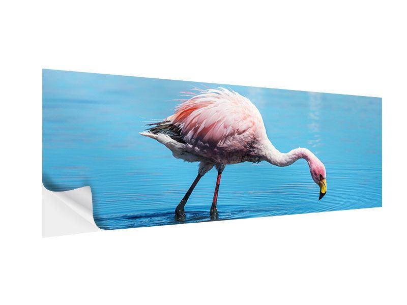 Klebeposter Panorama Der Flamingo