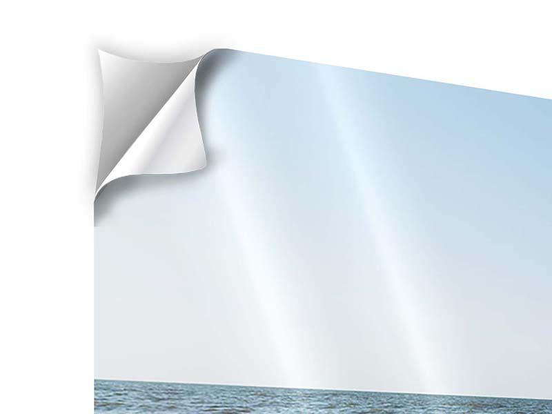 Klebeposter Panorama Sandspuren