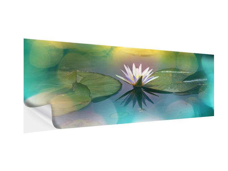 Klebeposter Panorama Lotus-Spiegelung