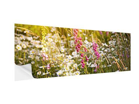 Klebeposter Panorama Sommerliche Blumenwiese