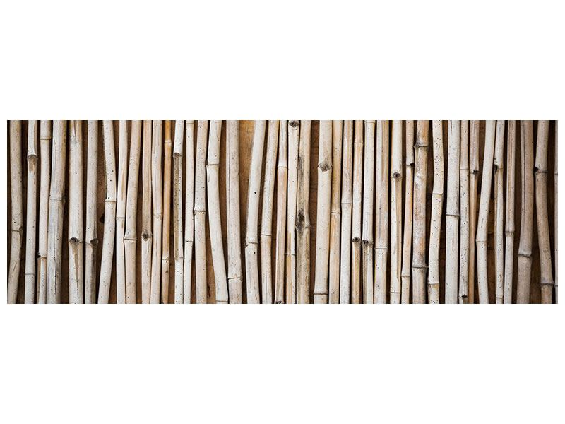 Klebeposter Panorama Getrocknete Bambusrohre