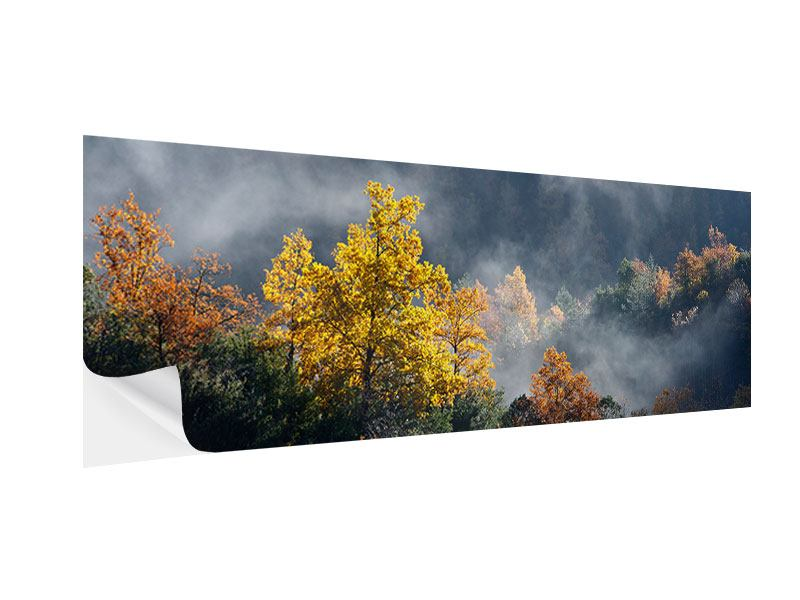 Klebeposter Panorama Mondscheinwald