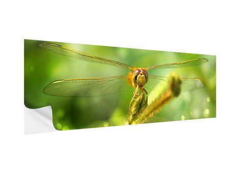 Klebeposter Panorama XXL-Libelle