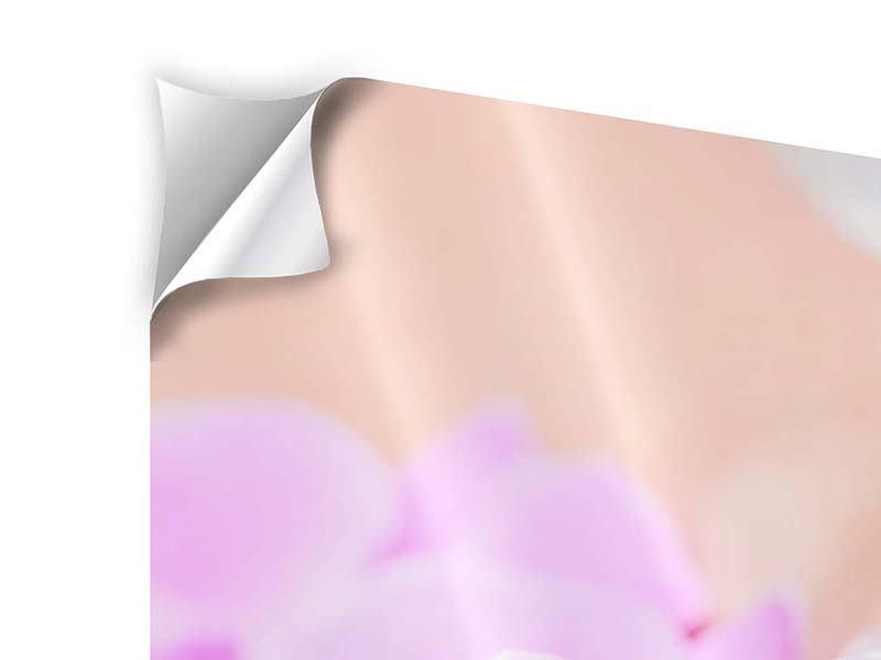 Klebeposter Panorama Manikürte Hände