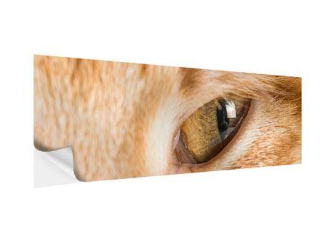 Klebeposter Panorama Close Up Katze