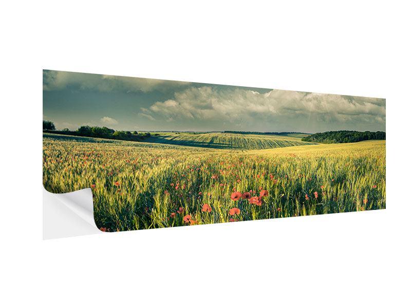 Klebeposter Panorama Der Mohn im Weizenfeld
