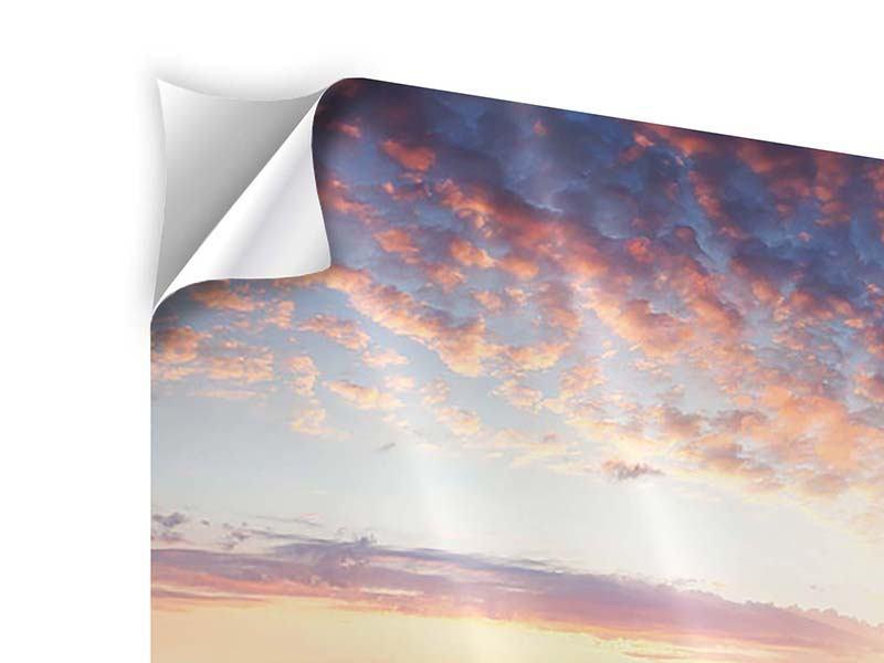 Klebeposter Panorama Ein Blumenfeld bei Sonnenaufgang