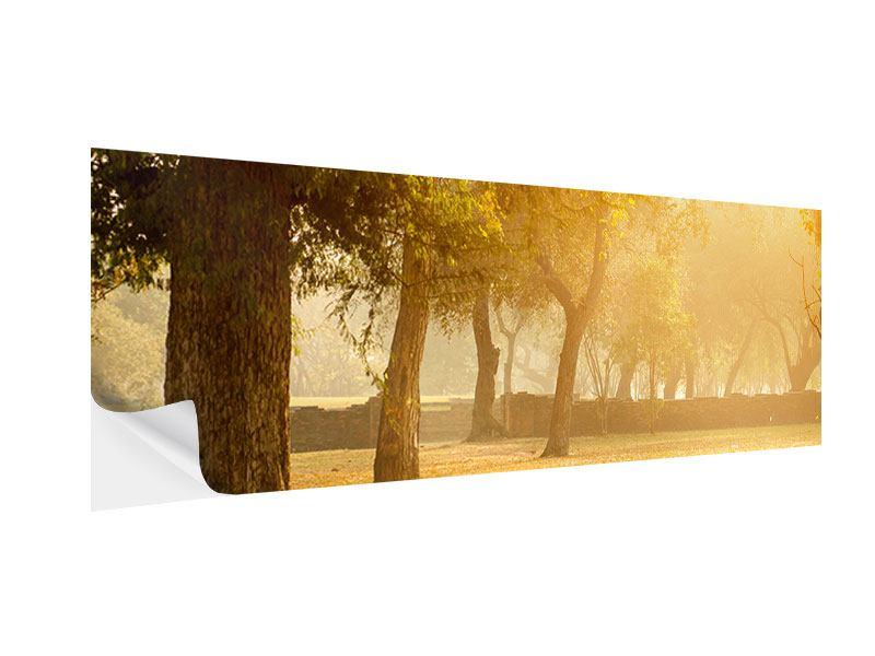 Klebeposter Panorama Romantik unter Bäumen