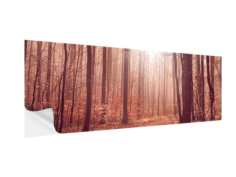 Klebeposter Panorama Sonnenuntergang im Herbstwald