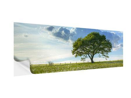 Klebeposter Panorama Frühlingsbaum