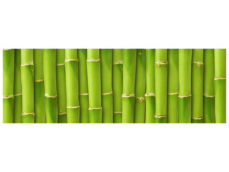 Klebeposter Panorama Bambuswand