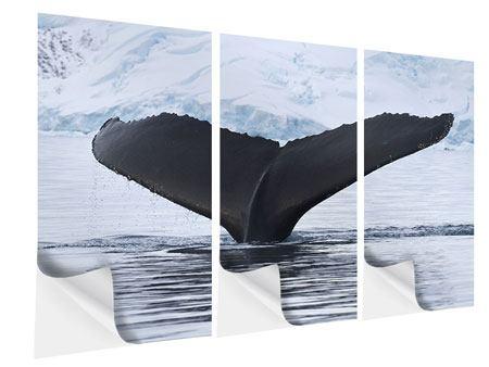 Klebeposter 3-teilig Der Buckelwal