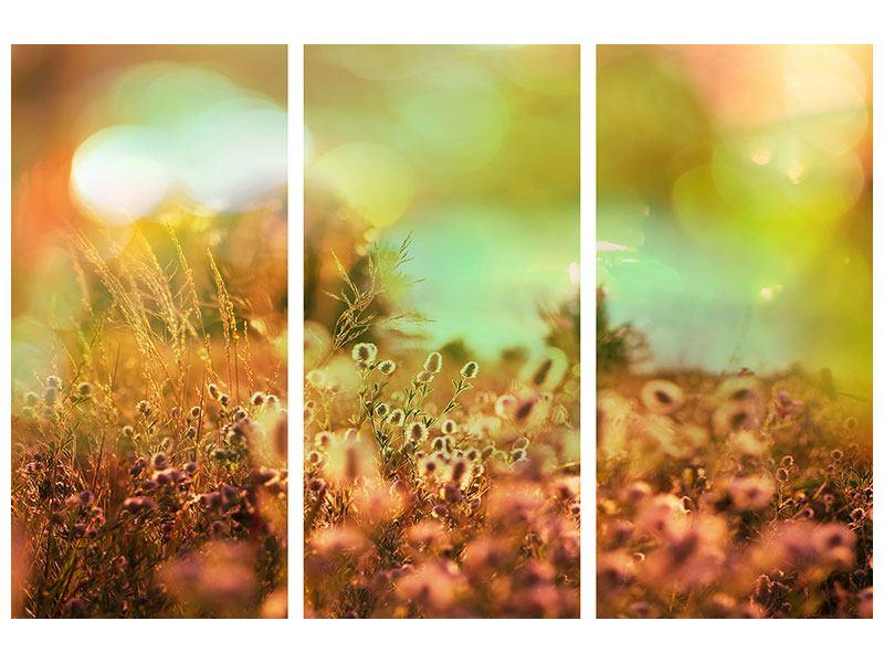 Klebeposter 3-teilig Blumenwiese in der Abenddämmerung