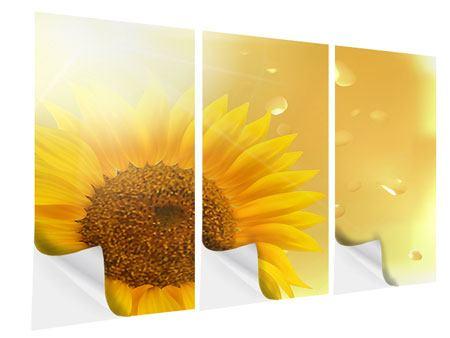 Klebeposter 3-teilig Sonnenblume im Morgentau