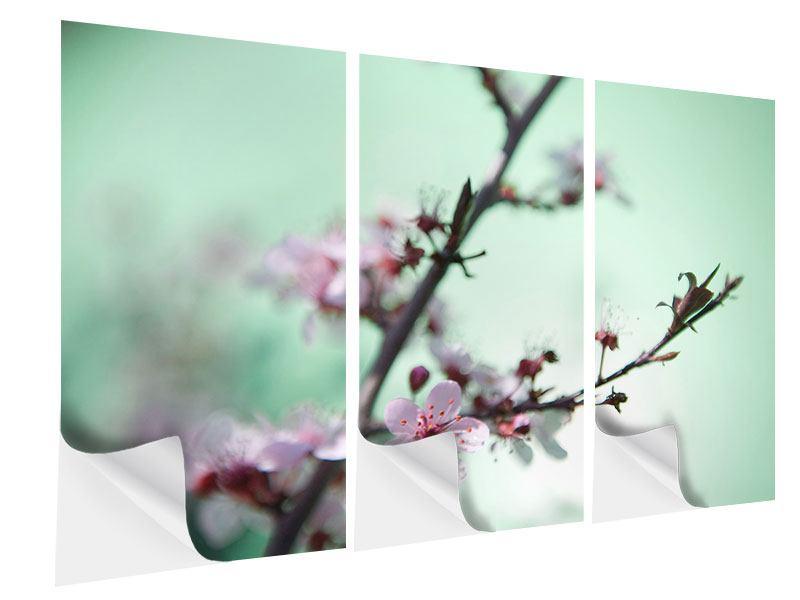 Klebeposter 3-teilig Die japanische Kirschblüte