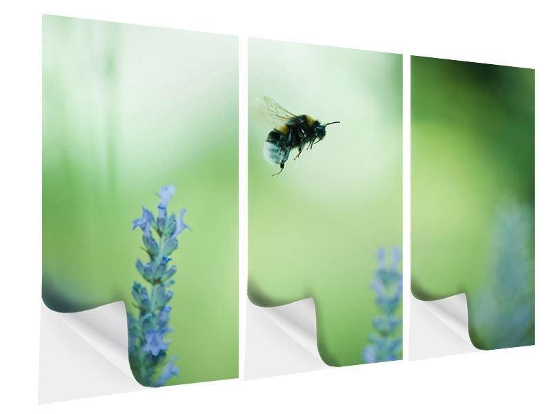 Klebeposter 3-teilig Die Biene