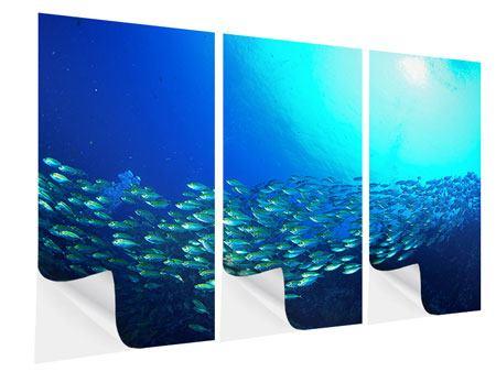Klebeposter 3-teilig Fischschwarm