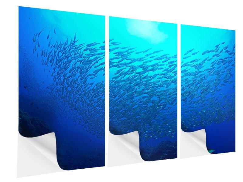 Klebeposter 3-teilig Fischwelt