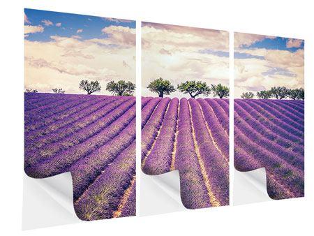 Klebeposter 3-teilig Das Lavendelfeld