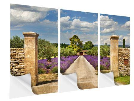 Klebeposter 3-teilig Lavendel-Garten